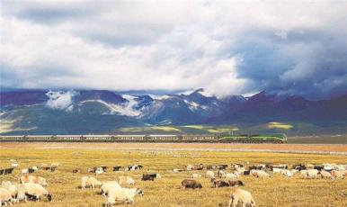 自然发现:美丽中国 青藏高原