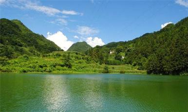 《美丽中国乡村行》 泸州水清鱼更肥